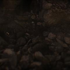 Lang despierta entre los escombros.