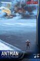 Ant-Man Civil War Hot Toys 5.jpg