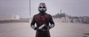 Ant-Man (Quantum Field Trip)