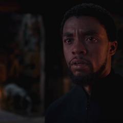 T'Challa descubre la verdad sobre lo ocurrido con N'Jobu.
