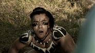 FE Mayan Hive 2