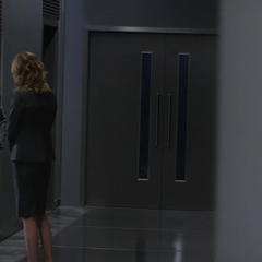 Sharon conversando con Alexander Pierce acerca de la misión.
