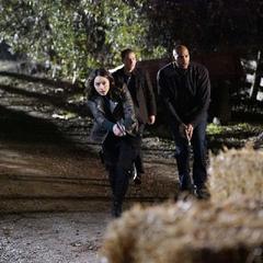 Johnson, Mackenzie y Fitz buscan a Blake.