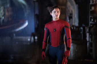 Spider Man Quote Marvel Cinematic Universe Wiki Fandom