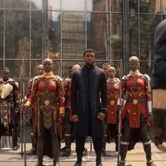 T'Challa recibe a los Vengadores.