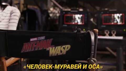 Человек-Муравей и Оса — съёмки начались