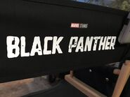 Black Panther Chair