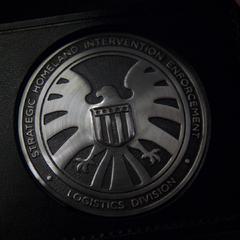 Placa de S.H.I.E.L.D. de Skye