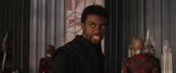 King T'Challa (AIW)