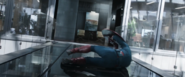 Cap Knocked Down