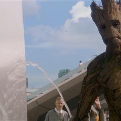 Groot es sorprendido bebiendo agua de la fuente.