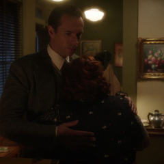 Jarvis le pide a Roberts cuidar de Ana.