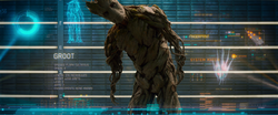 Groot's rap sheet