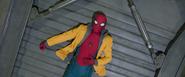 Spider-Man (D.O.D.C. Vault)