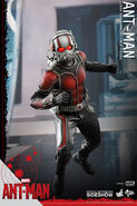 Ant-Man Hot Toys 2