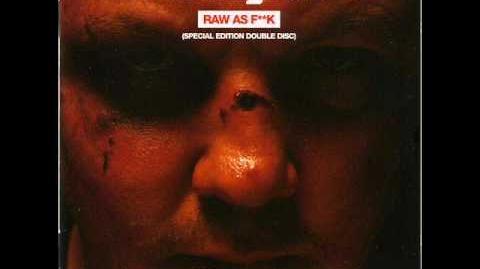 07. Freestylers - Punks (Krafty Kuts Remix)