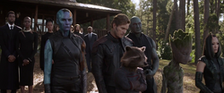 Guardians (Avengers Endgame)