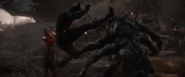 Black Panther (AE)