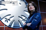 SHIELD-Cobie-Smulders