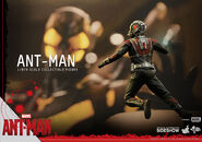 Ant-Man Hot Toys 15