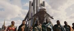 Black Panther (film) 120