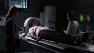 Coulson Brain Machine