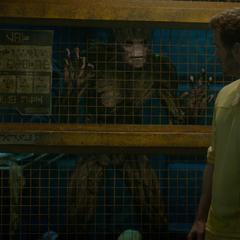 Groot escucha el plan de Rocket de escapar del Kyln.