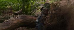 Groot Dies (Infinity War)