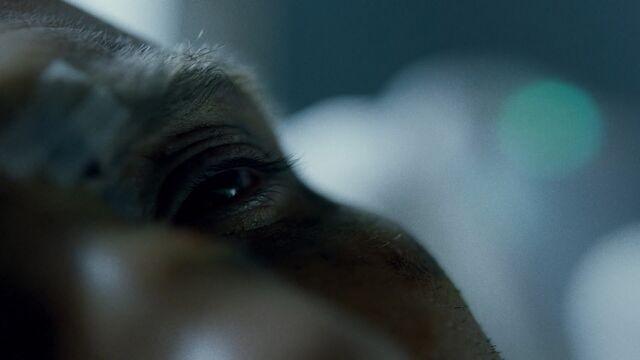 File:Punisher-EyeCU-HospitalBed.jpg