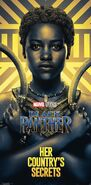 Gold Black Panther Poster 02