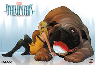 Inhumans Crystal and Lockjaw IMAX Banner