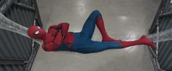SHM Relaxing Web