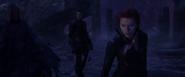 Red Skull & Black Widow