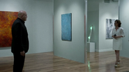 Scene Contempo Gallery