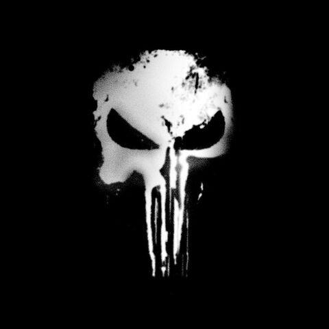 File:Punisher Series.jpg