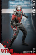 Ant-Man Hot Toys 4