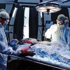 Rogers es descongelado por un equipo de S.H.I.E.L.D.