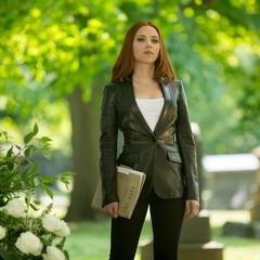 Romanoff localiza a Rogers en el cementerio.