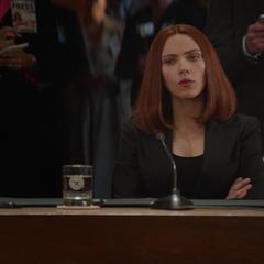 Romanoff se reúne con el Departamento de Defensa.