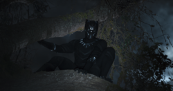 Pantera Negra se esconde