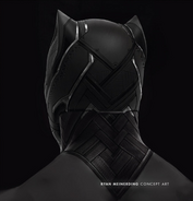 Black panther costume 2