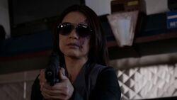 Agent-33-robbery