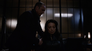 Coulson May LMDs