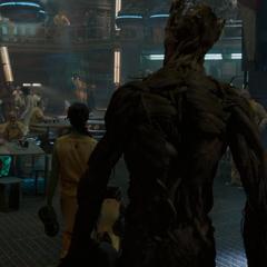 Groot llega al Klyn.