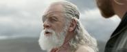 Odin in Exile