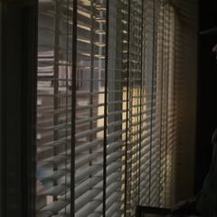 Carter es observada por Rogers.