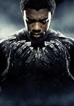 Black Panther Textless Character Poster 01