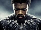 Black Panther (film)/Portal