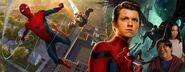 Spider-ManHomecoming-RyanMeinerding