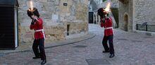 Royal Guards shooting at Drones